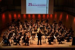 25 Jahre Musikakademie Rheinsberg, Deutsche Streicherphilharmonie