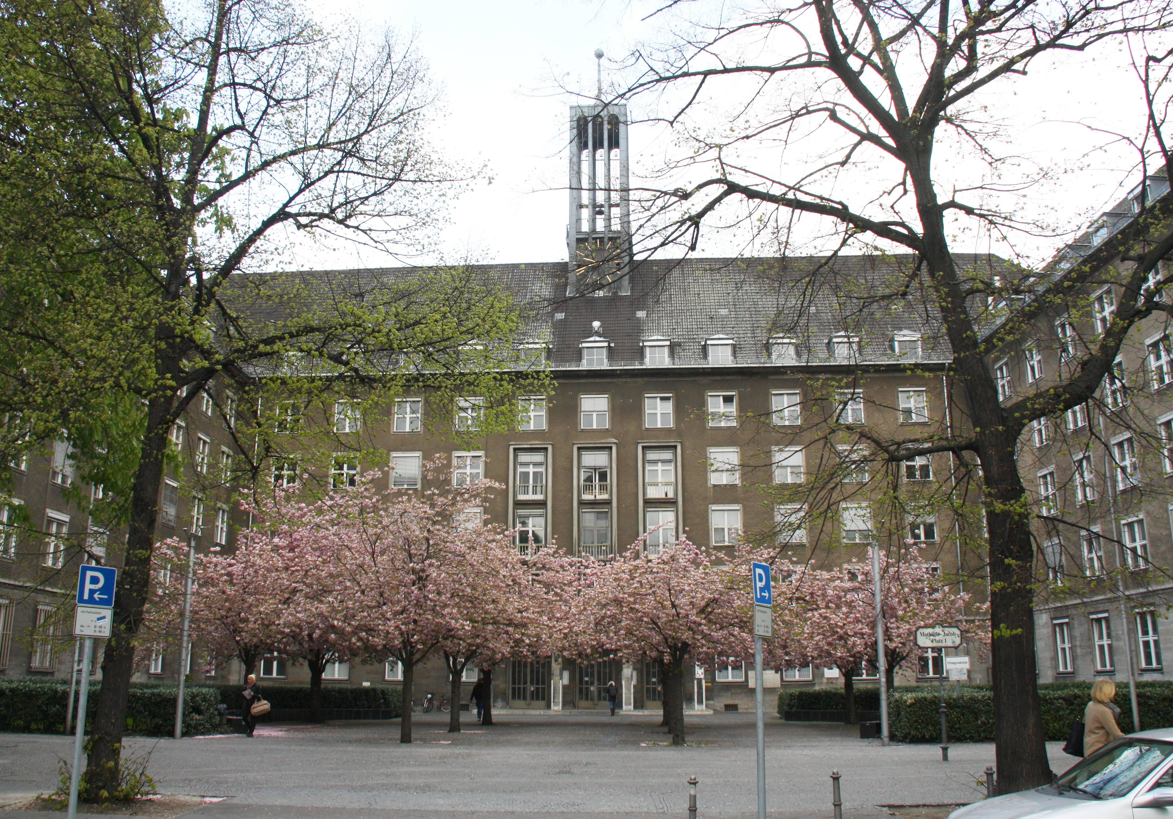 Das Sitzungegbäude im Frühlingskleid; Foto: D.Linke